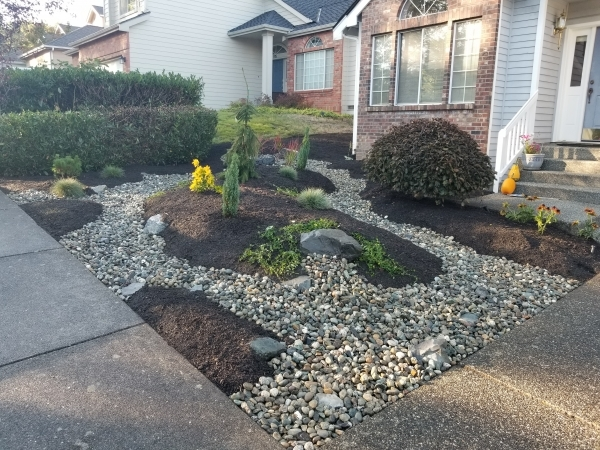 Customer Wanted To Eliminate Gr In Front Yard So We Installed A Dry River Bed With Planting Areas Full Gres And Small Shrubs