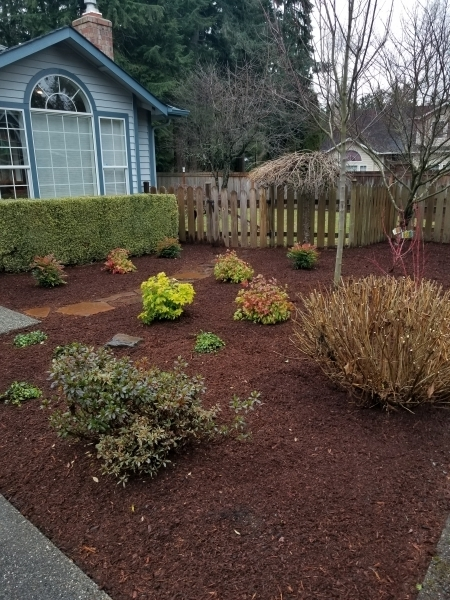 Low Maintenance Landscaping Ideas For Front Yard Inspired